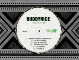 Buddynice - Everything Everything (Redemial Dub)